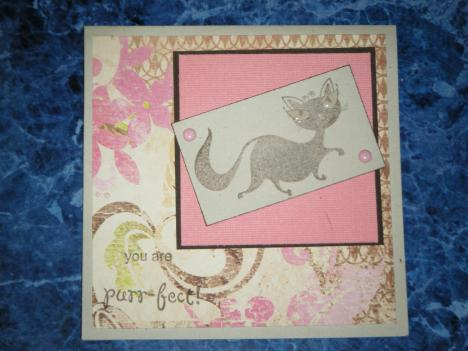 Cat card done with Laurie's sketch